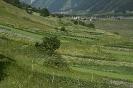 VS-Obergesteln-Kulturlandschaft130707160251